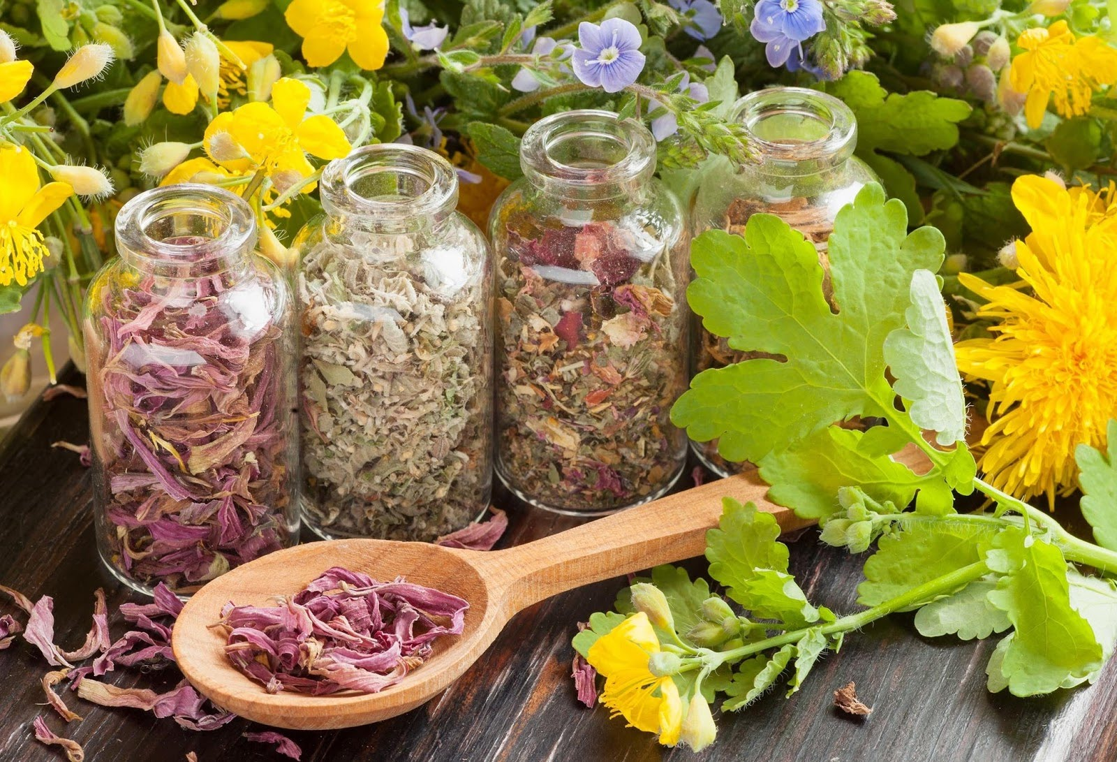 Травы от панкреатита поджелудочной