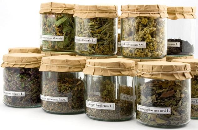 Травы от панкреатита