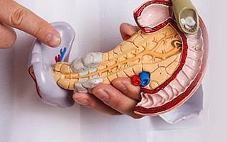 Липоматоз железы