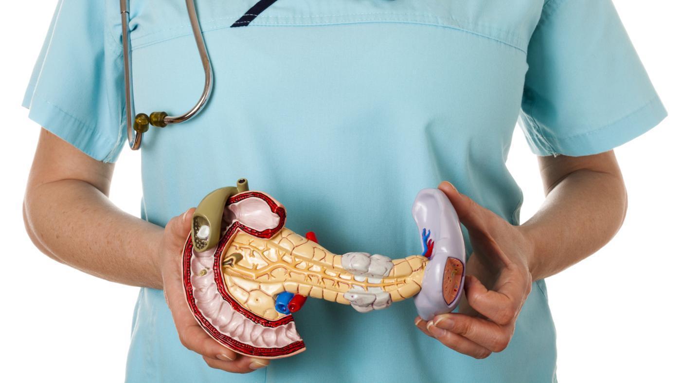 Питание панкреатит