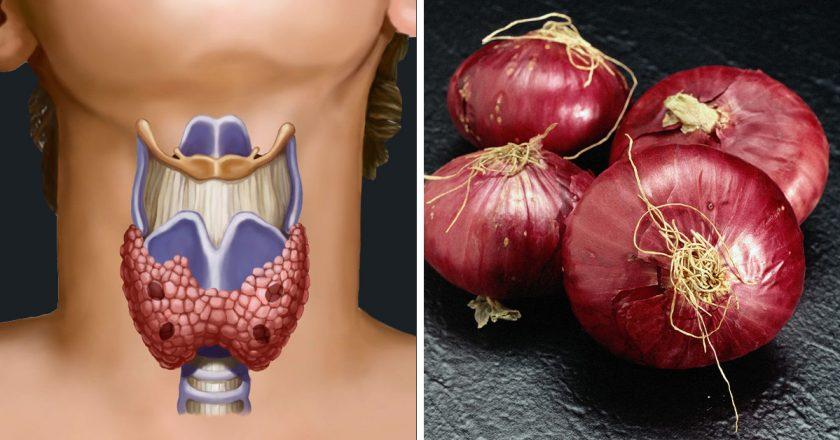 Щитовидка и лук