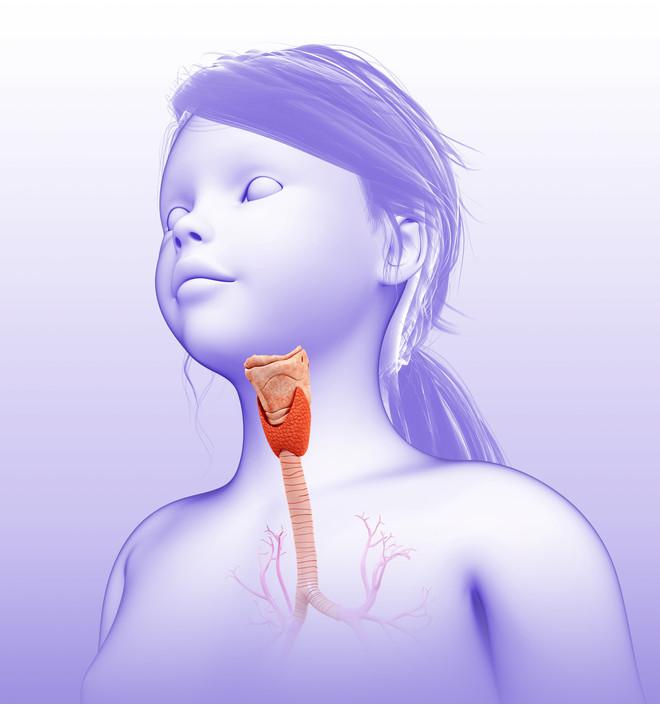 Щитовидка у ребенка