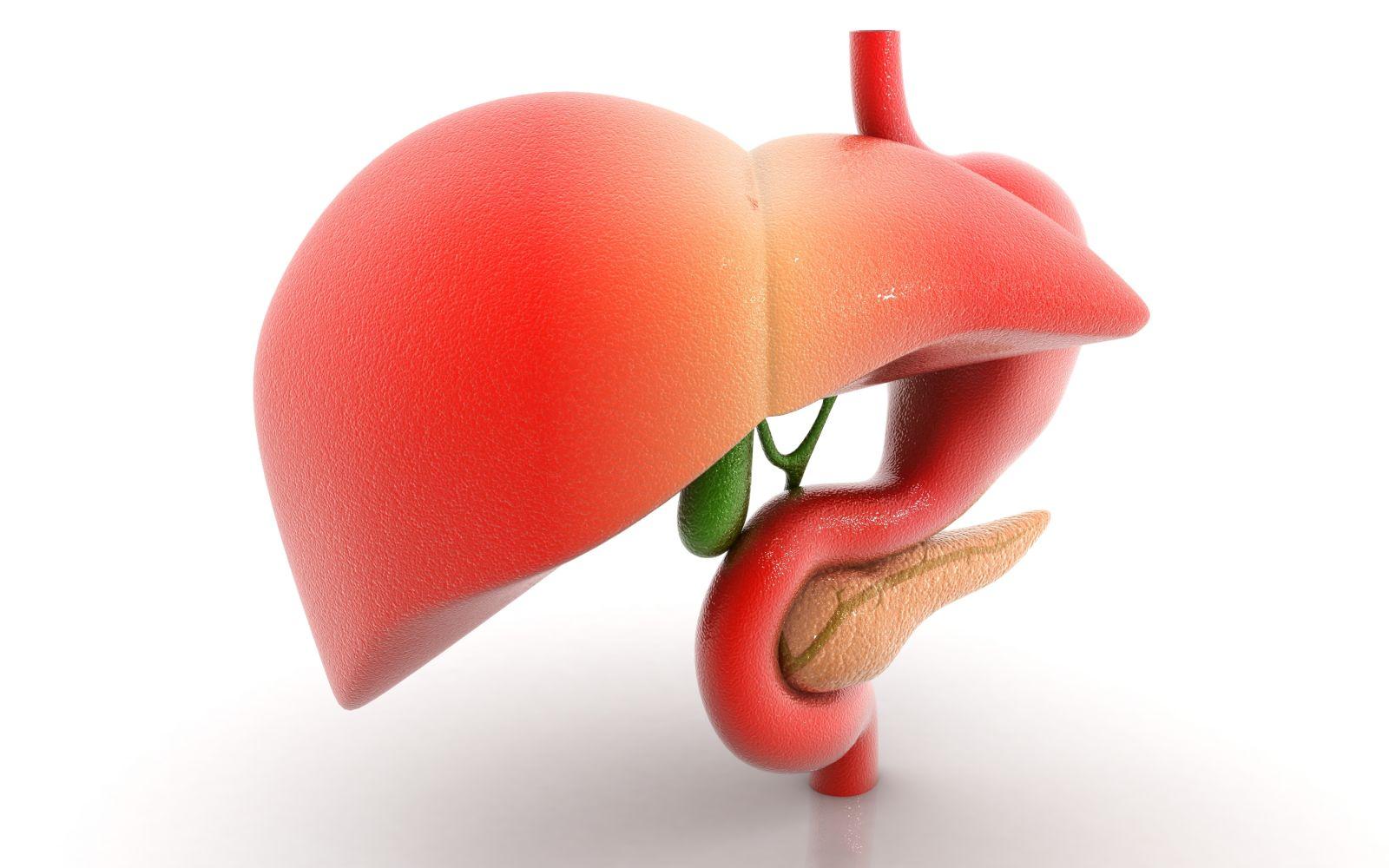 Воспаленная поджелудочная железа